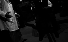 FMV Screenshot